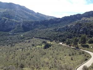 Rennrad-Trainingslager-Mallorca