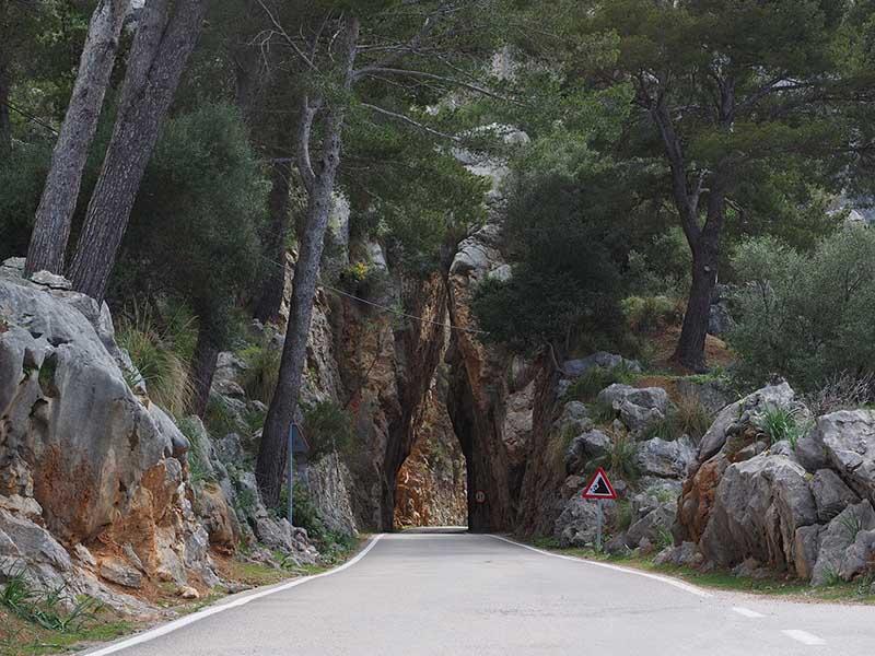 Durch die Tramuntana bei Mallorca 312